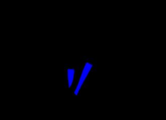 Blauwe Beenwarmers