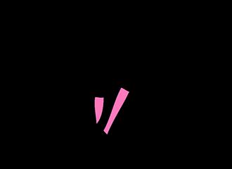 Roze Beenwarmers